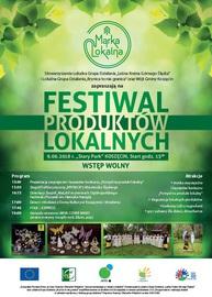 Festiwal 1.jpeg